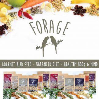 Forage Gourmet Seeds